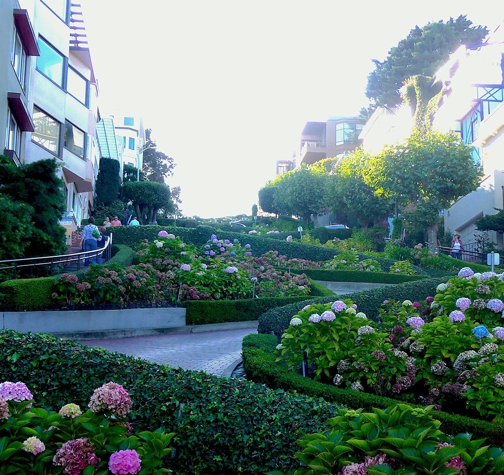 Twists and turns of Lombard St