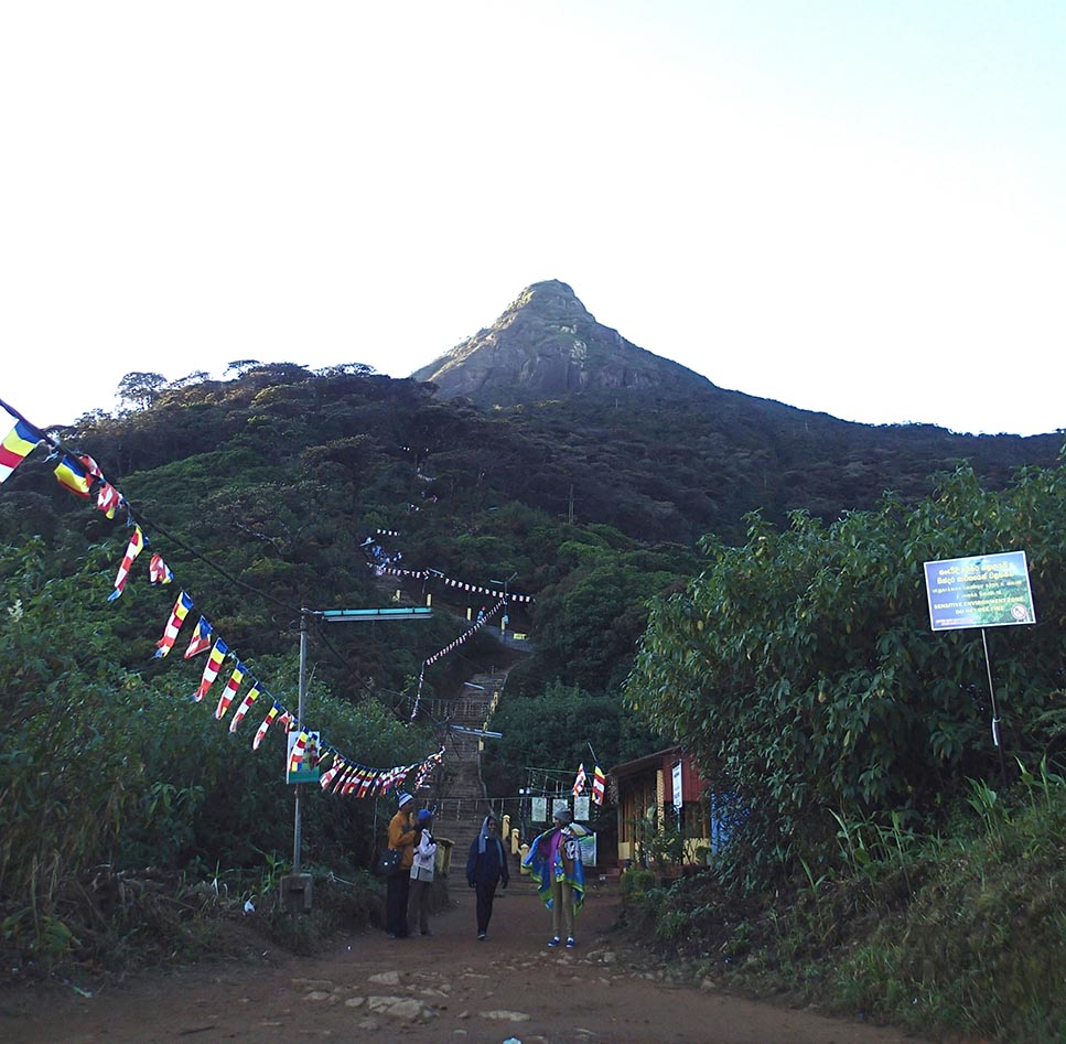 Adams peak summit view