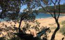 maitland bay hammock camping