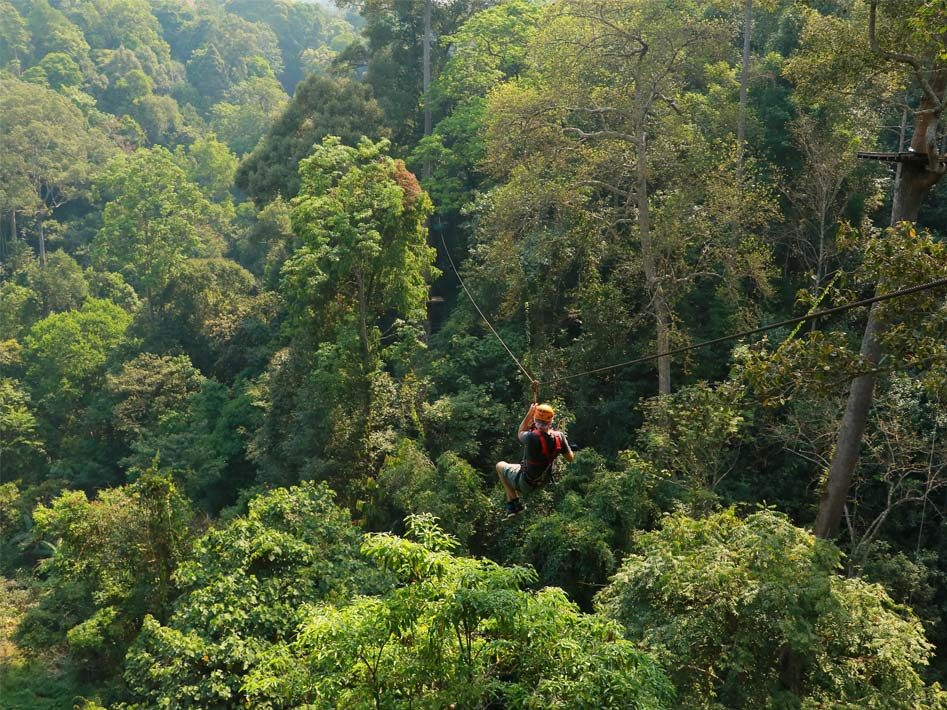 jungle-flight-chiang-mai-thailand