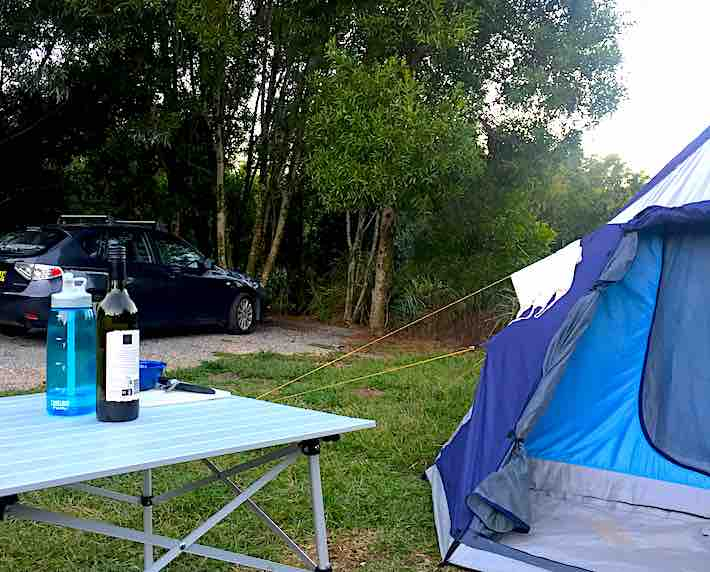 Settlement Campsite Springbrook National Park