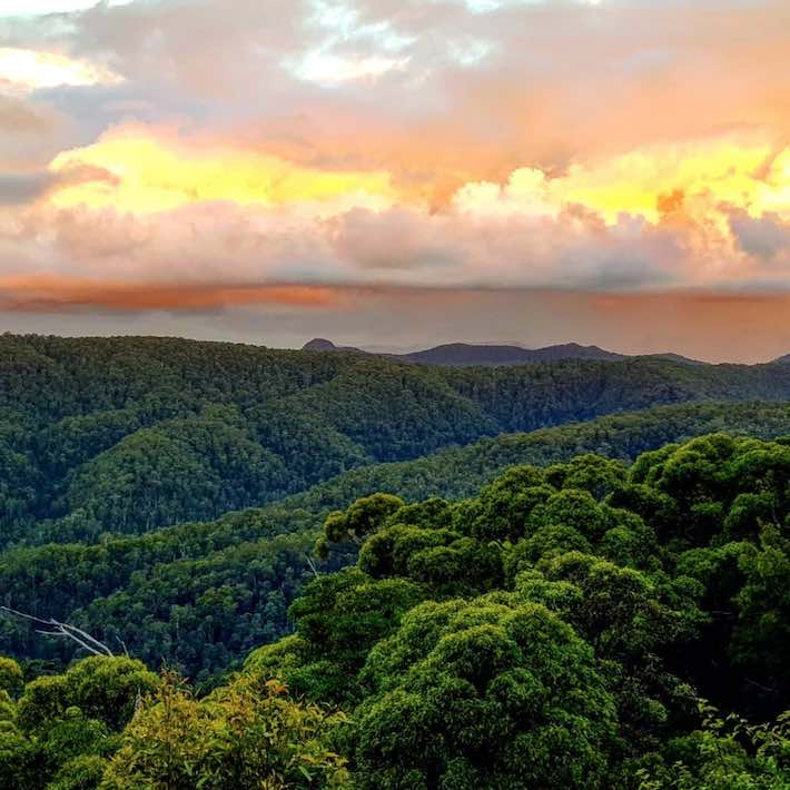 Springbrook National Park sunset